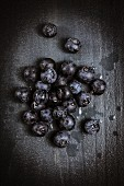 Blueberries on a black wooden background