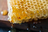Honeycomb (close up)