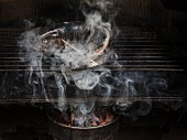 Trout being smoked in a smoker