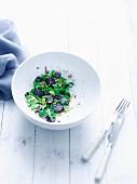 Vitelotte-Kartoffelsalat