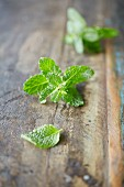 Fresh mint leaves on a wooden table