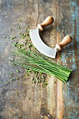 Fresh chives with a herb chopper