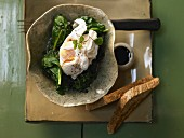Poached eggs on spinach with a red wine sauce