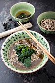 Soba noodle soup with algae (Japan)