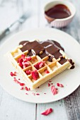 Waffles with dried strawberries and chocolate sauce