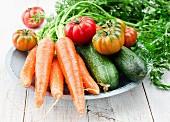 Frisches Gurken, Möhren und Tomaten