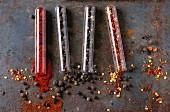 Chilipulver, Piment, Pfefferkörner und Chiliflocken in Reagenzgläschen
