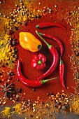 Spicy background with assortment of different hot chili peppers and mix of other spices