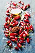 Rote Chilischoten, Chilipulver auf Löffel und Öl im Schälchen