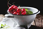 Fresh wet radishes in white colander over old wooden table