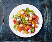 Colorful tomatoes salad with mozarella on blue wooden background