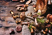 Mix of forest mushrooms over old wooden table