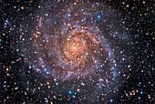 Spiral galaxy IC 342, optical image