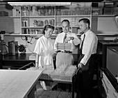 Serology test demonstration, 1950s