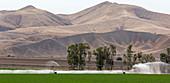 Farm irrigation, USA