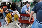 Trawler fishing