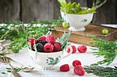 Vintage cup of raspberries and blackberries served with thuja branches