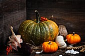 Herbstliches Stillleben mit Kürbissen