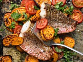 Oven baked red snapper fillets with sweet potatoes and tomatoes
