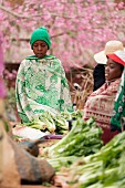 Vegetable sellers on the Sendrisoa weekly market near Ambalavao in central Madagascar, Africa