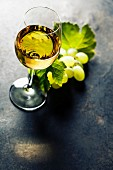 Glass of white wine on dark background