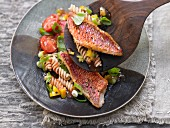 Fried red fish fillets with pasta and vegetables