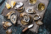 Open Oysters Fines de Claire with lemon and wine