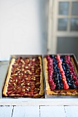 Plum cake and berry cake in baking tins