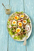 Tuna salad with egg, cucumber and radishes