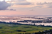 The view over the Mekong Delta in Vietnam