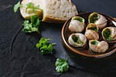 Escargots de Bourgogne - Snails with herbs butter, gourmet dish with parsley and bread