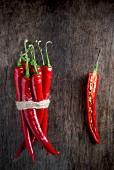 Frische rote Chillies, gebündelt und halbiert