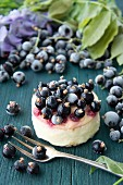 Fresh cheesecake with blackcurrants