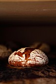 A loaf of rye-wheat bread in the oven - the bread has been baked until sufficiently brown and is ready