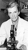 Elizabeth C. Crosby, American neuroanatomist