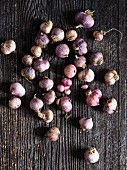 Many garlic bulbs on a wooden background