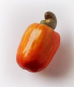 A cashew fruit with a nut