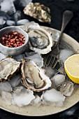 Frische Austern mit Mignonette-Sauce auf Eis