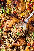 Chicken with rice, peppers and spring onions (China)