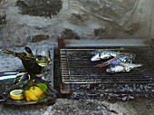 Fish on a charcoal grill