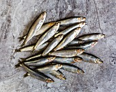 Pile of Sprats on a tile