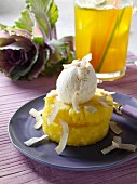 A scoop of coconut ice cream on pineapple rings editorial food