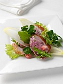 A plate of duck salad editorial food