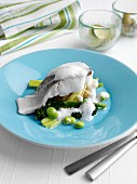 Steamed cod sprouting brocolli new potatoes broad beans leeks and cappuccino sauce