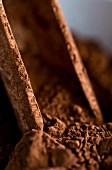 Cocoa powder (close up)