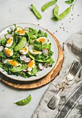 Healthy spring green salad with radish, boiled egg, arugula and  green pea in white plate on olive tree wood board