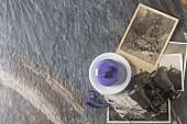 Trendige Moussetorte mit lila Glasur und Heidelbeeren