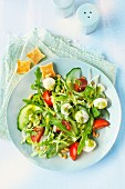 Rocket salad with mozzarella, cucumber and tomato
