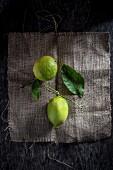 Two Lemons on Jute Background