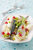 Mackerel with fennel and redcurrants